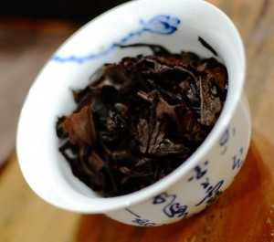 1970's Sheng Puer in the Gaiwan