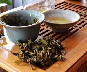 Spent Douji puer leaves from Naka Shan