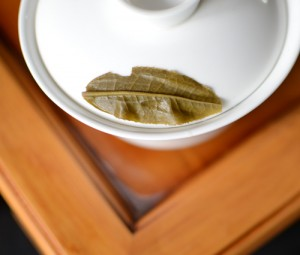 Single puerh tea leaf