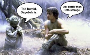 Humid Storage Star Wars Luke Skywalker Yoda