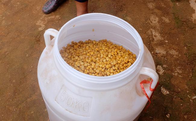 Yunnan corn moonshine