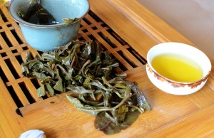 Yiwu tea leaves