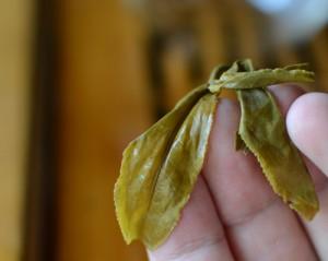 Puerh Leaf Tea