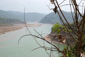 Lancang River Puerh Vice